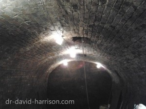 Williamson Tunnel 2